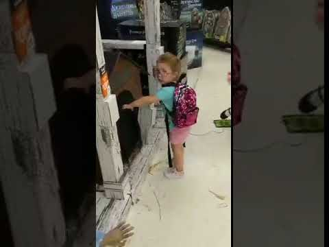 Xxx Mp4 Little Girl Frightened By Dog House Halloween Decoration 1007362 3gp Sex