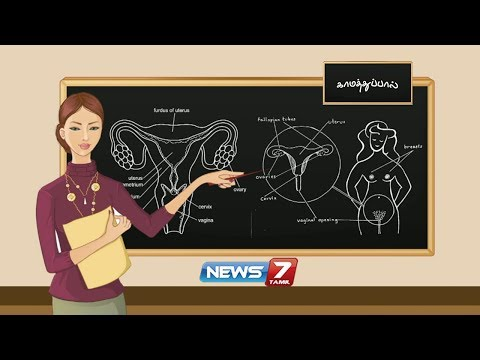 Xxx Mp4 காமத்துப்பால் Documentary About Sex Education News7 Tamil 3gp Sex