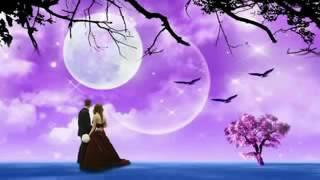 ▶ Poraner Pakhi S I Tutul 2012 Official Bangla Video Song HD 720p By Babu YouTube 360p
