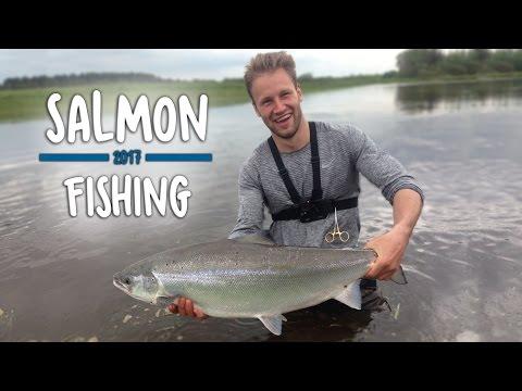 Xxx Mp4 KÆMPE FED LAKS Skjern Å Salmon Fishing 3gp Sex