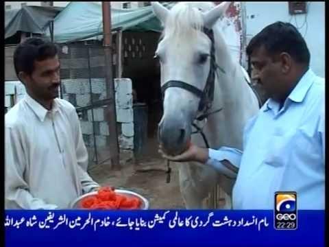Geo TV Jan 2008 Muharram ZULJANA Report by Manisha Ali