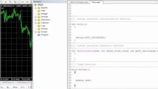 كورس تعليمي بالفيديو للـ MQL4. الفصل الاول : الدرس الثاني : شرح تفصيلي لل Variable
