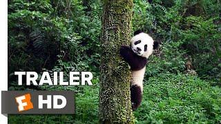Pandas Teaser Trailer #1 (2018) | Movieclips Indie