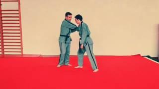 Sin Moo Hapkido, programme de la ceinture verte 1