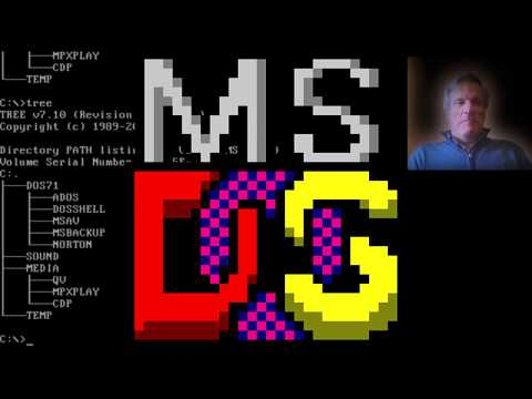 Zazzy tries out MS-DOS (1981)