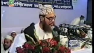 Bangla waz. Jibone sofolotar upay.Allama Delwar Hossain Saidi