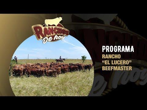 Xxx Mp4 PROGRAMA Rancho Quot El Lucero Quot Beefmaster 3gp Sex