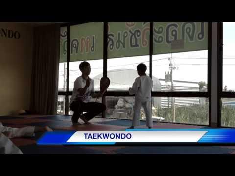 Best Taekwondo By Pulay