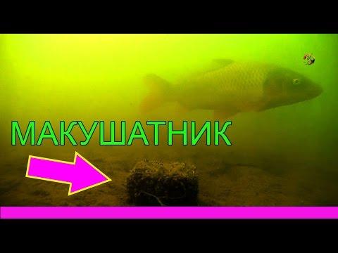 рыбалка получи макушатник 2015 видео
