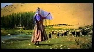 PersianSexyDanceJamilehرقص و استرپ تيز از جميله