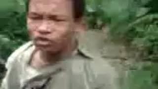 Matwala gayak from india
