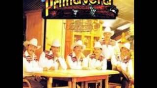 Conjunto Primavera Disco completo Amigo mesero 1994