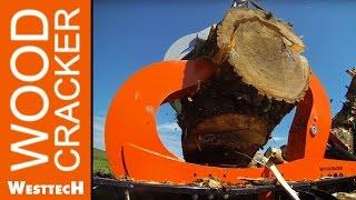 Profi-Forstmaschinen von Westtech Woodcracker