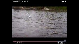 Salmon fishing June 23 24 2018