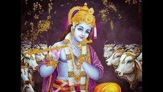Jai Govinda Jai Gopala ~ Vaiyasaki Dasa