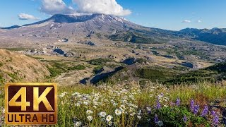 Mount St.Helens UHD/4K Relaxation Video for stress relief | Bird Songs and Soothing Nature Sounds