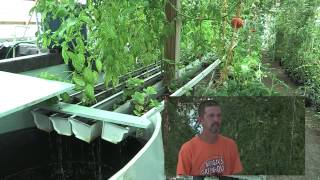 Morgan's Hatchery & Greenhouse