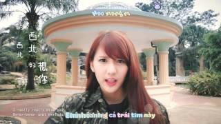 [Kara + Vietsub] I miss you (Hao xiang ni) - Joyce Chu {MEOW Team}