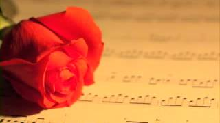 hindi songs bollywood most of soft hits new nonstop music latest Instrumental melody indian best