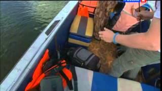 видео рыбалка в мамадыше