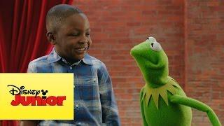 Momento Muppet - Percusiones