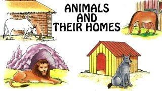 Animals And Their Homes   Animal Shelter For Kids   Fun & Learn   Preschool Learning Videos For Kids