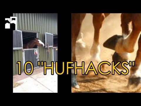 10 LIFEHACKS rund um die Pferde Hufe