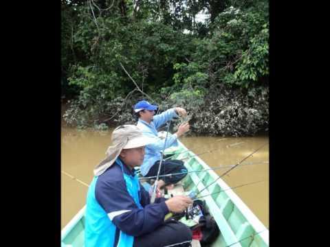05.12.10 Prawn Fishing Memancing Udang Galah Sg Kayan Lundu Sarawak . Maher Zain Thank You Allah