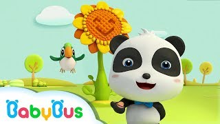 ❤ The Sunflower | Animation For Babies | BabyBus