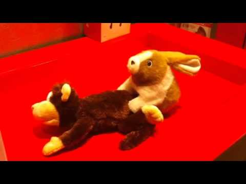 funny Sexy video rabbit and monkey at toy store lol..