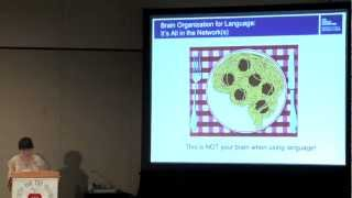 Brain Organization for Language: It's All in the Network