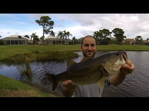 BASS FISHING Florida Golf Course Pond Dec. Jan.