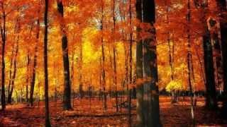"""FOUR SEASONS-AUTUMN""-Antonio VIVALDI-(Les Quatre saisons-L"