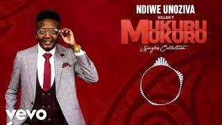 Killer T - Ndiwe Unoziva (Official Audio)