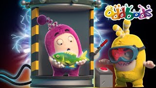 Oddbods | The Odd Experiment | Funny Cartoons