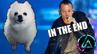 Linkin Park - 'In The End' em cachorrês ft. Memes por João Roberto (ORIGINAL)