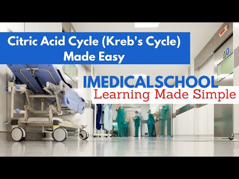 Medical School - Citric Acid Cycle (Kreb's Cycle) Made Easy