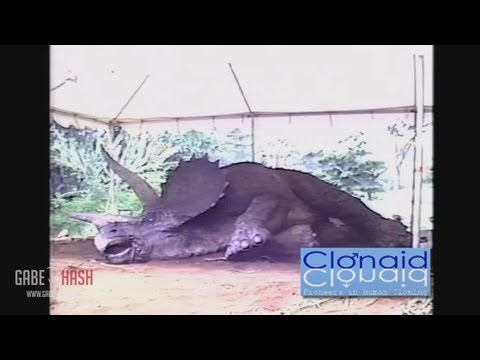 FIRST CLONED DINOSAUR DIES SEPTEMBER 23 2013 EXPLAINED