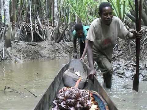 fishing Asmat Papua