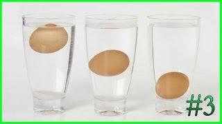 كيف تعرف البيض الجيد من الفاسد قبل طهوه بأفضل وأسهل 3 طرق