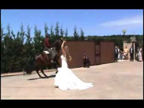 Boda Diego y Vanesa baila la novia sevillana con caballo . Dancing girl in a wedding with a horse.