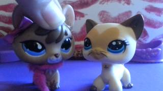 Lps muisc video selfe (mess up)
