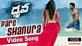 Pareshanura Dhruva Full HD video song ram charan