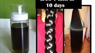 grow hair 1 inch in 10 days | Curry leaf herbal oil | Starnatural beauties