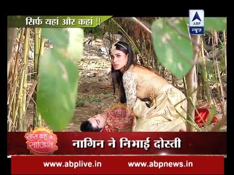 Xxx Mp4 Naagin 2 Shivangi SAVES Her Friend Rudra 3gp Sex