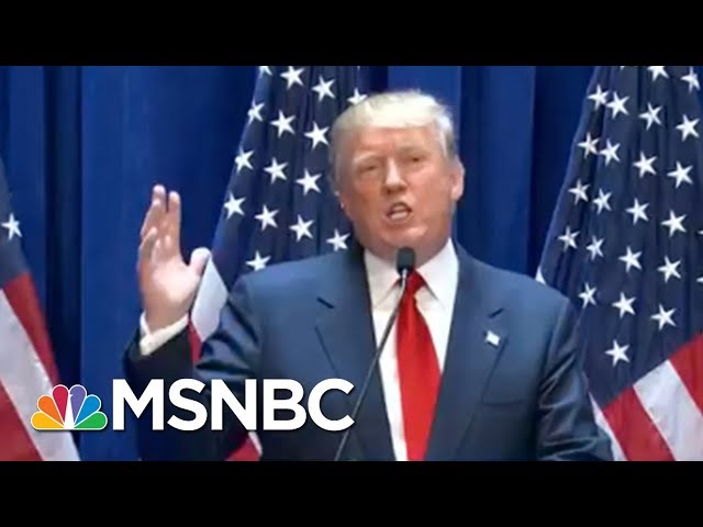 Watch Reagan, Bush And Bush Demolish President Trump On DACA | The Beat With Ari Melber | MSNBC