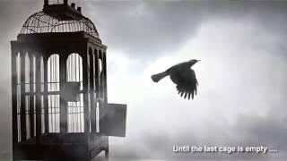 Bangla Gojol 2016 New    Pran Pakhita Ural Dilo    Bangla Islamic Song 2016