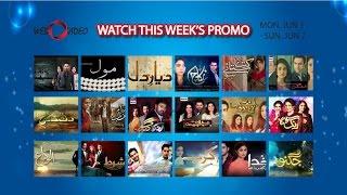 Watch All Pakistani Hit Dramas Promo - Mon-Sun (Jun 1 - Jun 7)