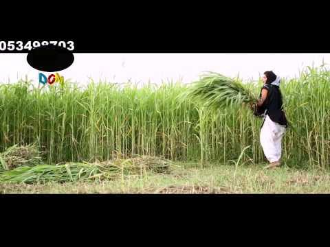 Xxx Mp4 Mahri Gaal Main Tu Ek Patola Tu Hd 1080p 3gp Sex