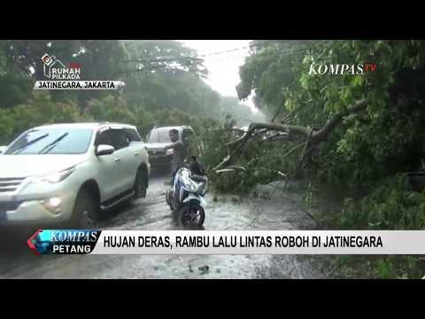 Hujan dan Angin Kencang Sebabkan Pohon Tumbang